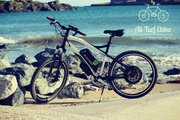 ALL TURF EBIKE 1000W 16AH ELECTRIC BIKE - DUAL POWER CONTROL